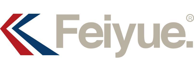 飞跃/Feiyue鞋业
