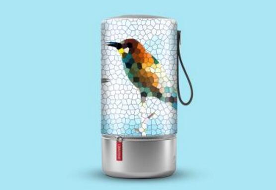 小鸟音响假洋品牌