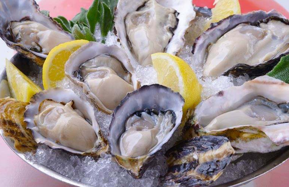牡蛎与生蚝的不同