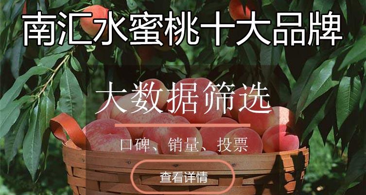 南汇水蜜桃十大品牌排行榜