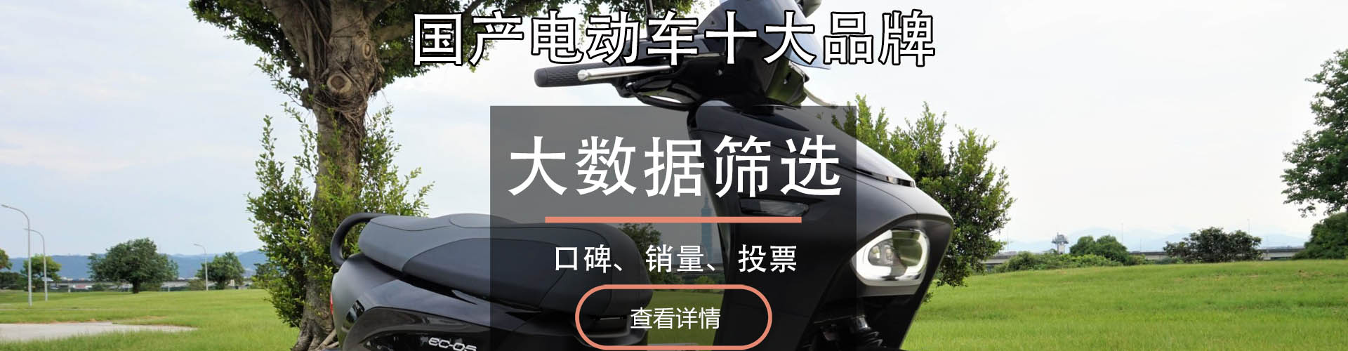 国产电动车十大品牌排行榜