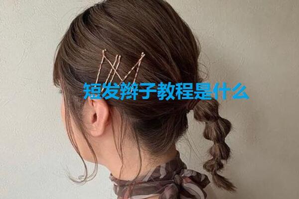 短发辫子教程是什么