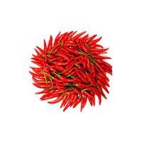辣椒种子十大品牌排行榜