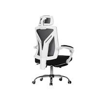 人体工学椅十大品牌排行榜