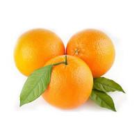 鲜橙十大品牌排行榜