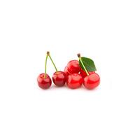 针叶樱桃十大品牌排行榜